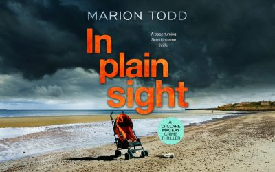 Book Review – In Plain Sight by Marion Todd
