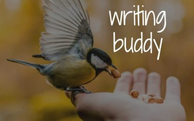 7 ways to find a writing buddy – You don't have to go it alone